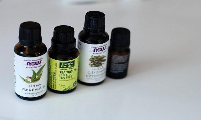 Olio essenziale di Tea tree oil: proprietà e possibili impieghi
